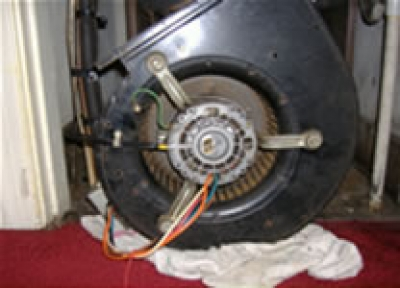 Blower Motor and Cage